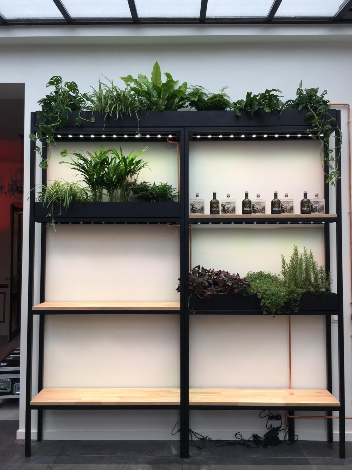 Plant kast