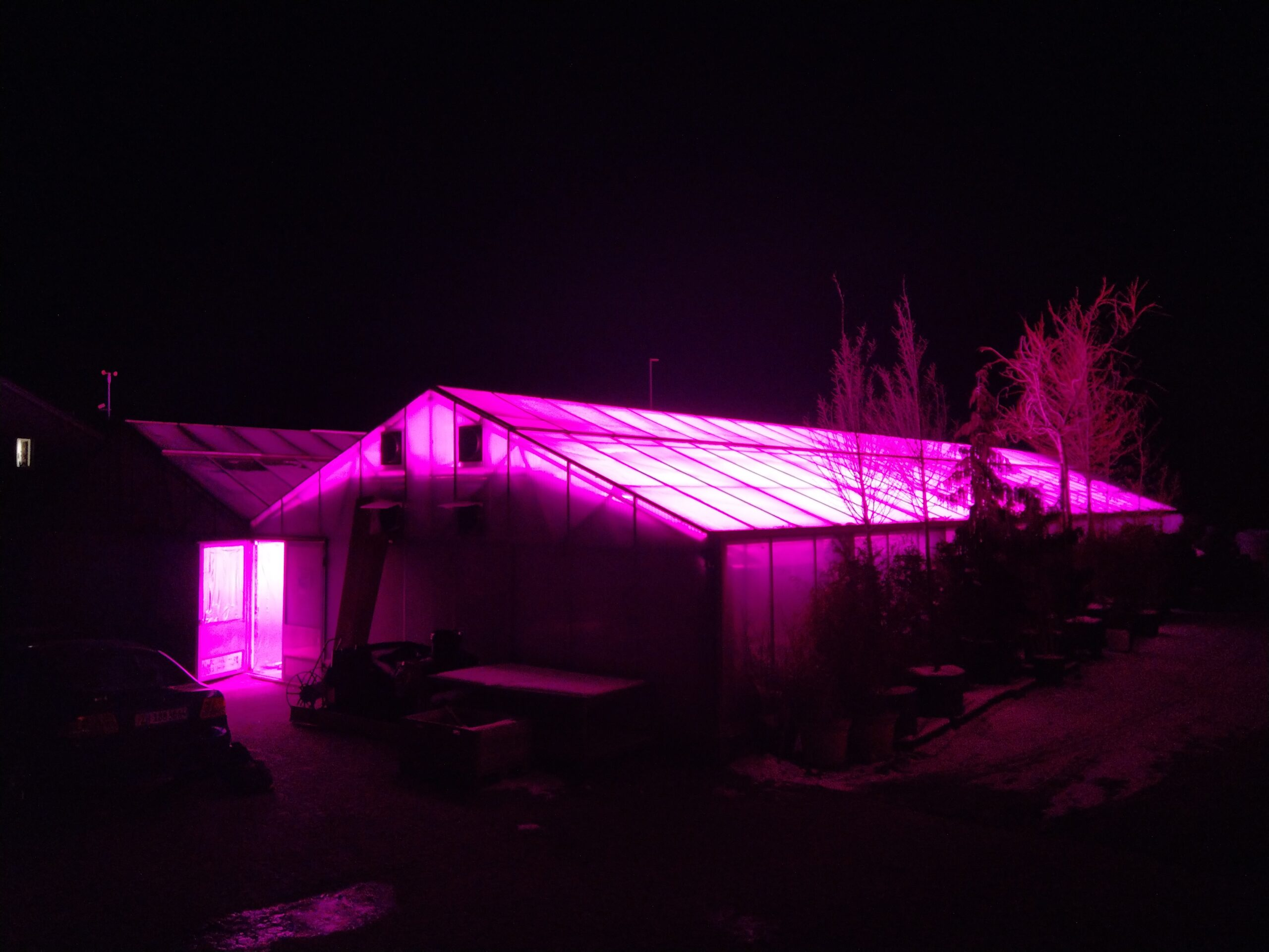 greenhouse by night