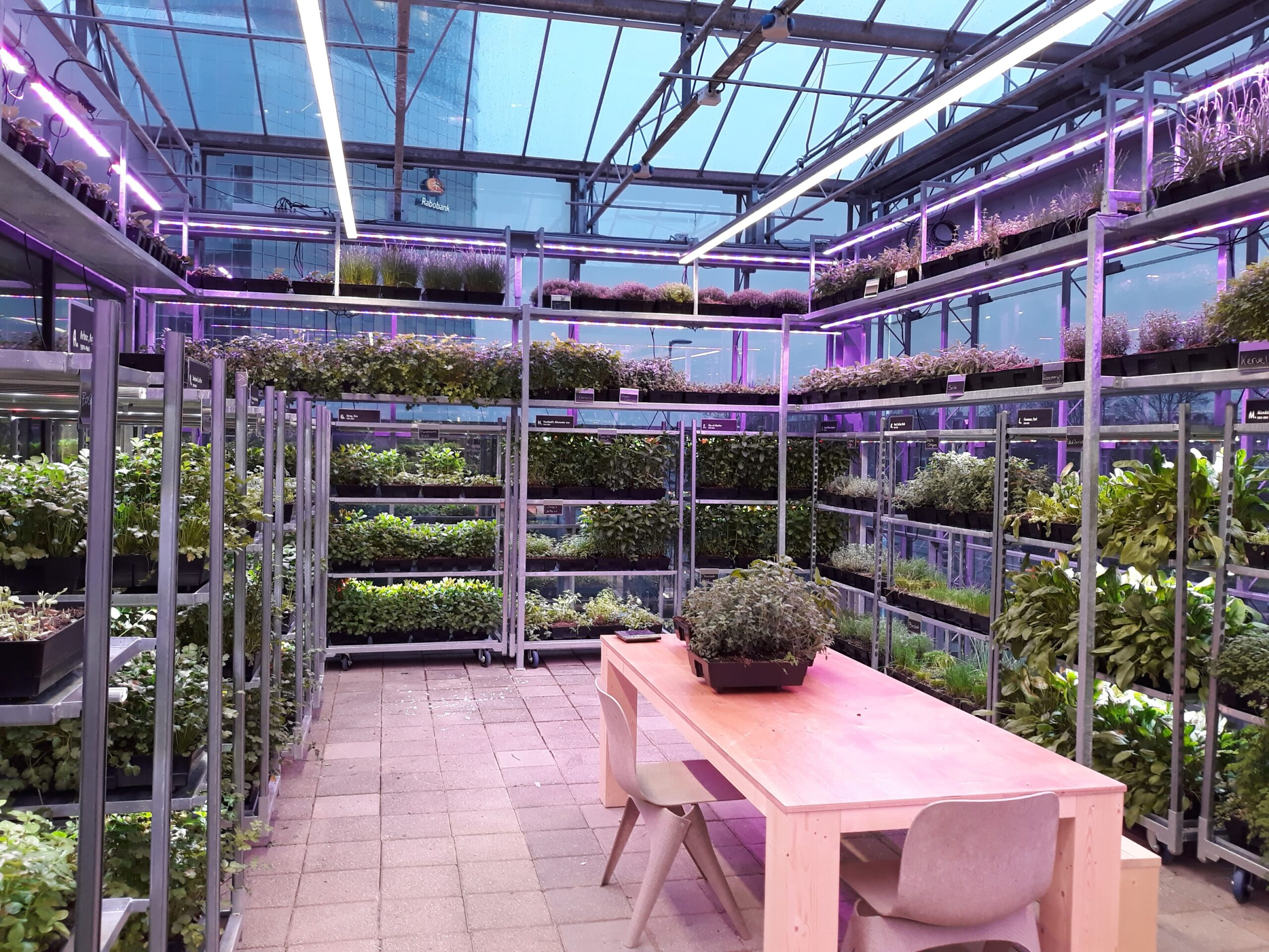 The Green House table
